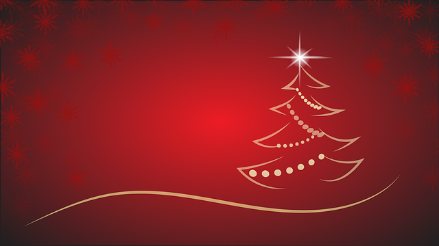 christmas-2892235_640.png